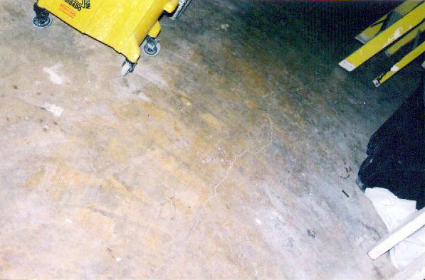 We also do concrete floor polish, stain, and seal (this is a before pic)